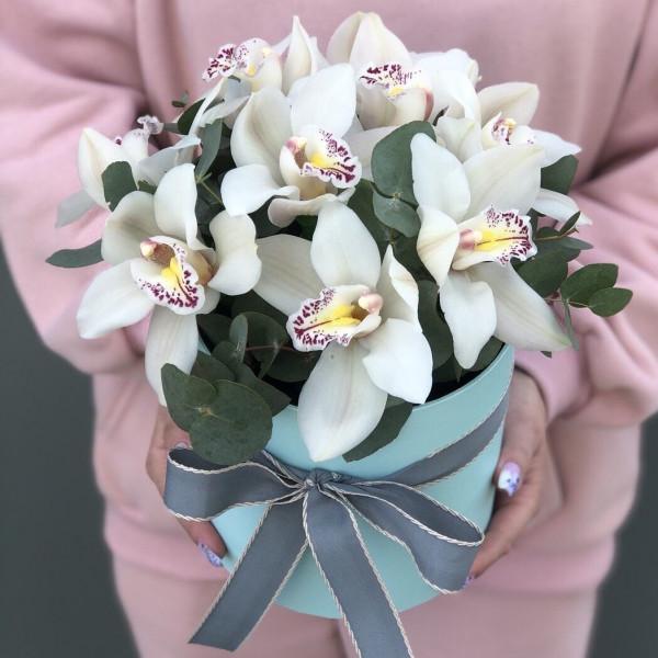 9 орхидей в шляпной коробке с зеленью