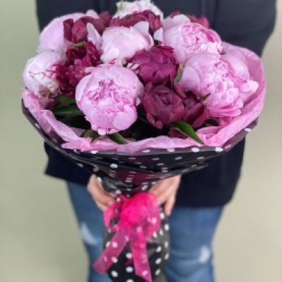 17 розово-сиреневых пионов