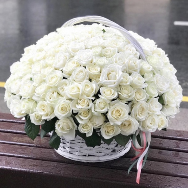 Корзина со 101 белой розой
