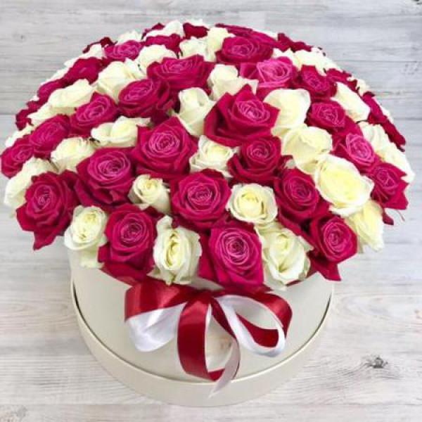 Композиция из 101 бело-малиновой розы