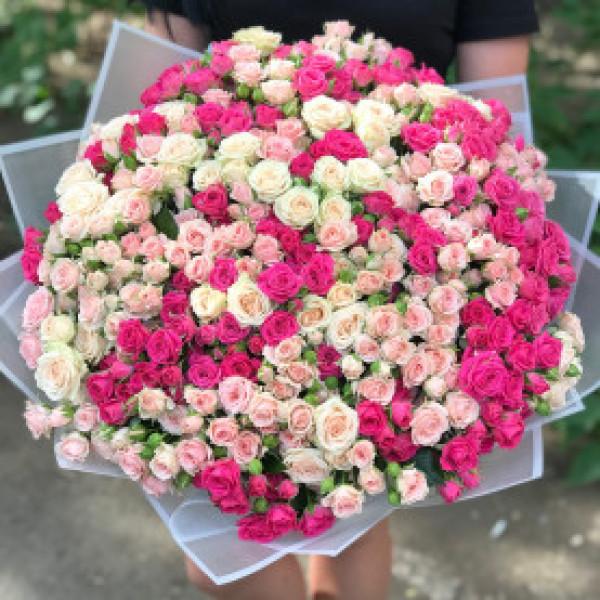 Букет из 101 бело- розовой кустовой розы