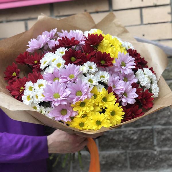 Букет из 11 разноцветных кустовых хризантем