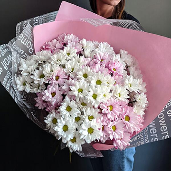 Букет из 13 бело-розовых хризантем