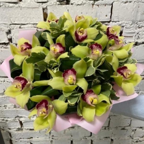 Букет из 15 зеленых орхидей с зеленью