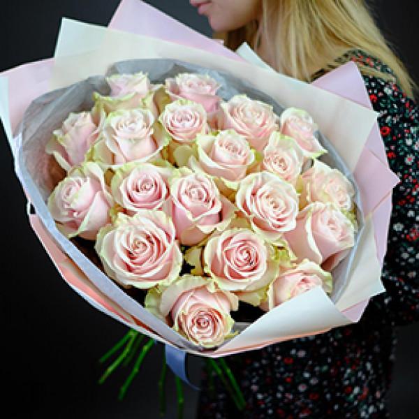 19 нежно-розовых роз в упаковке