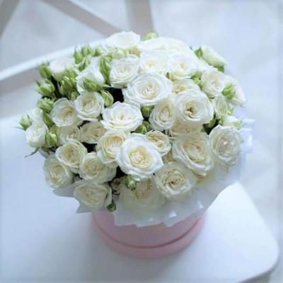 21 белая кустовая роза в шляпной коробке