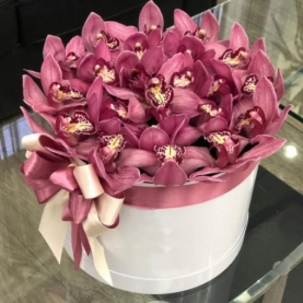 Композиция из 21 розовой орхидеи