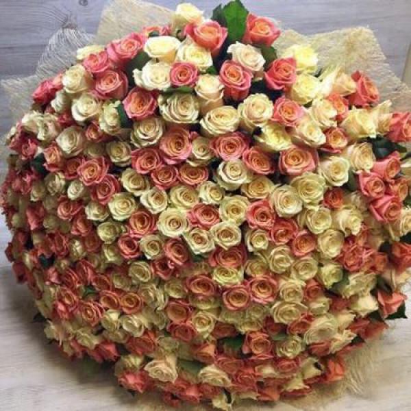 Букет из 301 розы ассорти