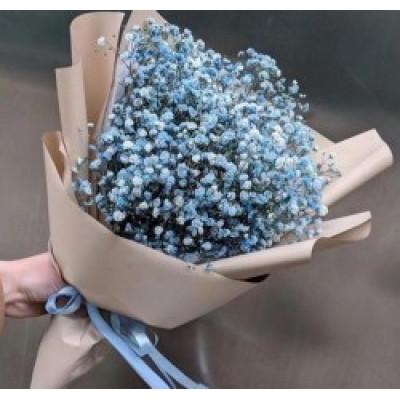 5 голубых гипсофил в упаковке