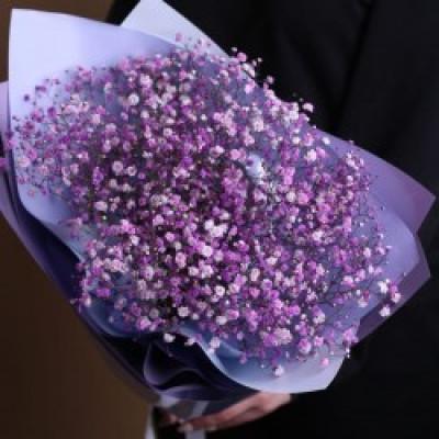 Букет из 5 фиолетовых гипсофил