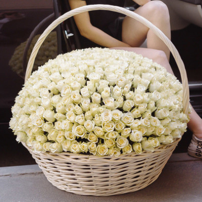 Корзина с 501 белой розой