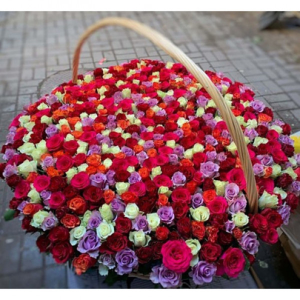 Корзина с 501 розой