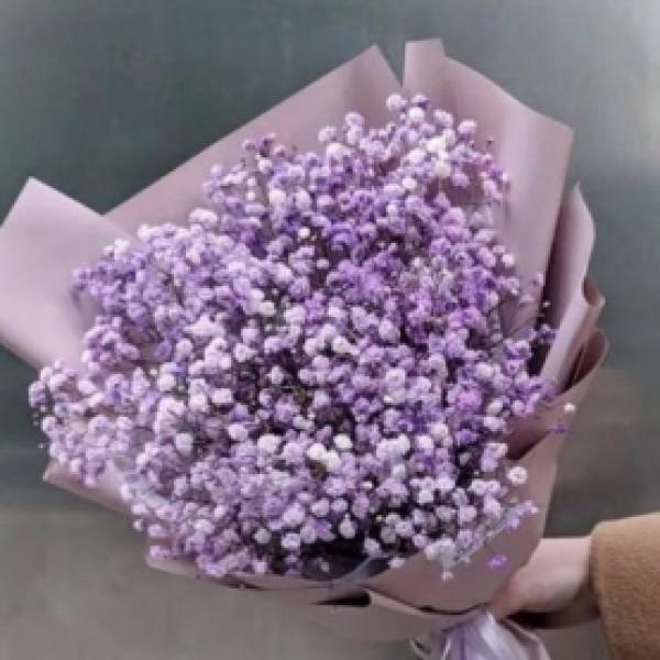 Букет из 9 фиолетовых гипсофил