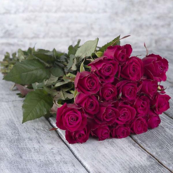 19 малиновых роз