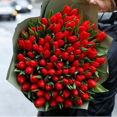 101 красный тюльпан