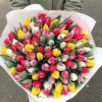 101 тюльпан Ассорти