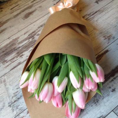 13 розовых тюльпанов в упаковке