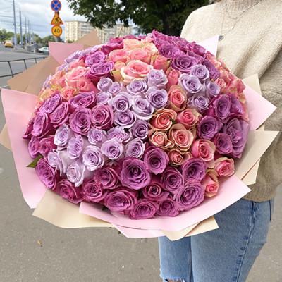 151 цветная роза