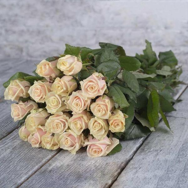 19 бежево-розовых роз