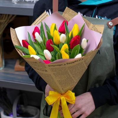 19 тюльпанов Ассотри в упаковке