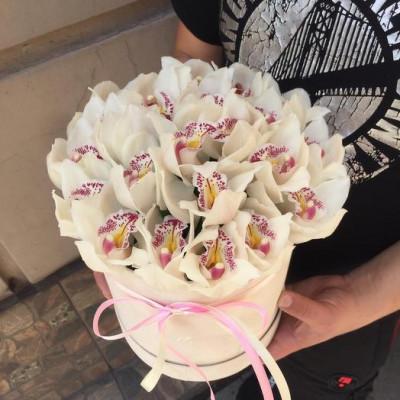 21 Орхидея в шляпной коробке