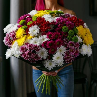 25 кустовых хризантем АССОРТИ