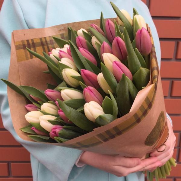 25 бело-розовых тюльпанов в упаковке