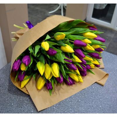 51 желтый и сиреневый  тюльпан в упаковке