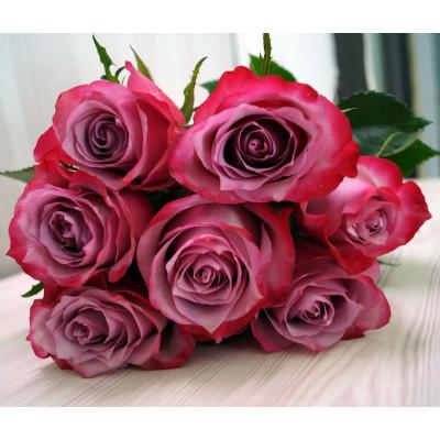 7 сиреневых роз