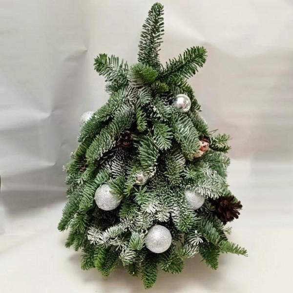 Декоративная елка из нобилиса