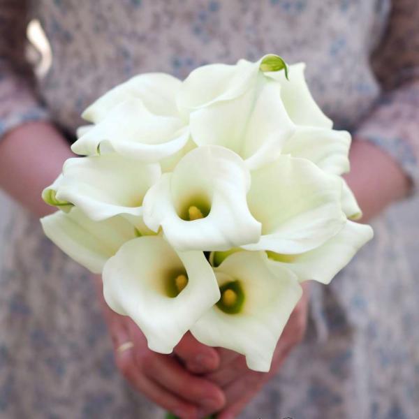 Букет невесты из 19 белых калл